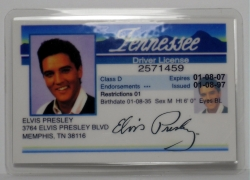 Fahrausweis Drivers-License